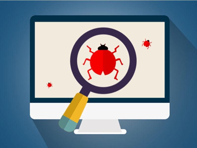 website bugs